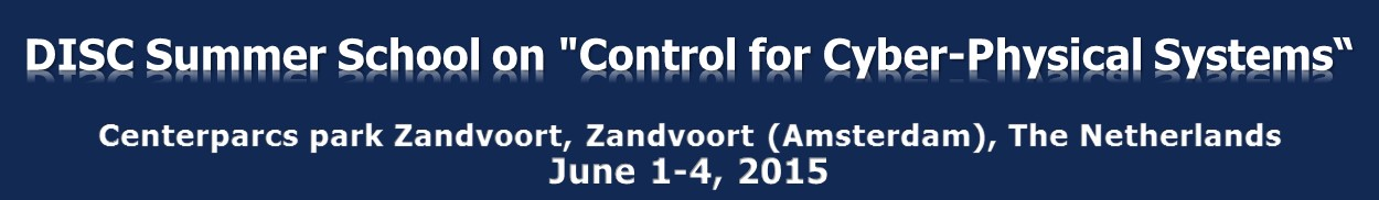 DISC Summer